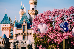 Sleeping Beauty Castle (dolewhip) Tags: balloons disneyland disney sleepingbeautycastle