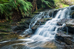 IMG_8768-2 (gsreejith) Tags: waterfalls cascade leura