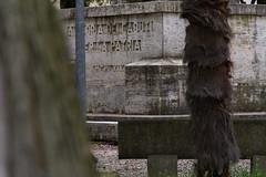 "il parco dei sensi  #morrodalba #italy #clod #giornatedifotografia #sensi #enricoprada #canon #parco (claudio ""clod"" giuliani) Tags: italy canon clod sensi morrodalba giornatedifotografia"