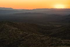 Sotol Vista (michael spear hawkins) Tags: rural outside outdoors texas tx sony adapter westtexas bigbendnationalpark a7 bigbend deset chisosmountains mirrorless nikkor300mmf45 nikon300mmf45 sonya7