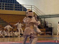 stefanou_15_5_2016_knockdown_104