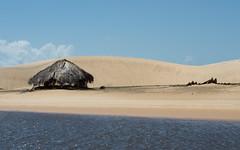 Dunas no Rio Preguias (felipe sahd) Tags: brasil maranho dunas riopreguias madacaru