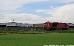 G2000 03 (MattiaDeambrogio) Tags: train italia trains db cargo 03 pino treno treni railion g2000 legnami vossloh borgolavezzaro