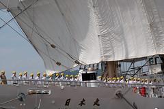Sail drill  : Nipponmaru Japan (Colorful-wind) Tags: light shadow white japan port ship may fujifilm fukuoka lightandshadow sailingship mojiko nipponmaru 2016 kitakyusyu moji xti saildrill