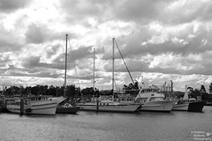 0D6A9571 (Stephen Baldwin Photography) Tags: newcastle australia nsw