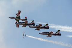 IMG_3820 (David Madeira Fernandes) Tags: jet morocco knights portuguese menara marrocos tricolori the ajet alphajet fap imas 103sqn