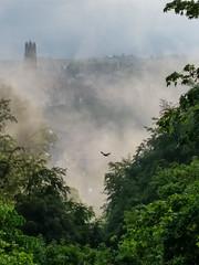 Aprs la pluie (andrscho) Tags: soleil pluie fribourg printemps brouillard brume matin
