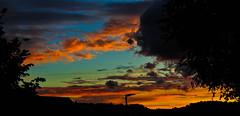 Sunset glow (Kat-i) Tags: blue trees sunset sky orange clouds bayern deutschland sonnenuntergang himmel wolken blau kati bume farben katharina 2016 nikon1v1