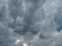 Banking (StephenCaissiePhoto) Tags: sky scale up weather silhouette clouds contrast plane grey moody ominous air flight jet dramatic stormy transportation desaturated proportion heavens banking phaseone p30 captureone