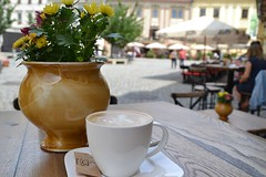 coffee and morning mood (Gabriel Kay) Tags: morning flower coffee breakfast cafe downtown mood drink coffeeshop cappuccino