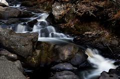 Meandering River (Doreencpa) Tags: longexposure water creek river waterfall stream d500 watercourse