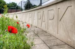 Warrington Victoria park 01 HD jun 16 (Shaun the grime lover) Tags: park red summer flower color colour sign warrington cheshire victoria poppy poppies hdr latchford knutsfordroad