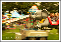 Life Is A Carnival - Point Grey Fiesta XT3605e (Harris Hui (in search of light)) Tags: park carnival canada elephant motion blur childhood vancouver 35mm flying fuji child bc weekend dumbo fast richmond motionblur slowshutter amusementpark fujifilm panning havefun funfair childhoodmemories standardlens xt1 fujix pointgreyfiesta mirrorless harrishui vancouverdslrshooter fujixseries digitalmirrorlesscamera fujixcamera fujixt1 fujixambassador fuji35mmf2