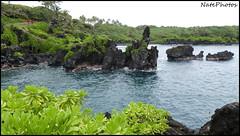 WSP(1) (NatePhotos) Tags: road sunset sea hawaii bay waterfall rainbow cows turtle maui hana jungle waterfalls kapalua rooster eel napili 2016 natephotos