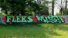 Graffiti (oerendhard1) Tags: urban streetart art graffiti eindhoven vandalism mister flex mistr