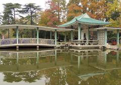 Xiaoyaojin park autumn colors (German Vogel) Tags: china eastasia anhui hefei xiaoyaojin park chinese chinesegarden pond reflection waterreflection water gazebo turquoise bridge architecture travel tourism autumn fall season relaxing beautiful