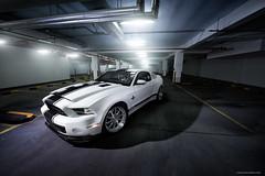Ford Mustang GT500 Shelby Super Snake (Michael R. Cruz) Tags: dubai dubaicars dubaiphotographer mydubai dubaisportscars dubaicarphotographer