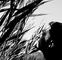 (Lenta'Strichka) Tags: light portrait people blackandwhite sunlight selfportrait black eyes hands shine lips shadowplay minimalism