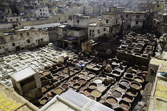 (ph.8) Tags: leather tanning medina fes fez morocco
