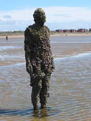 DSCF0700 (SierPinskiA) Tags: sea shells beach liverpool sand ironman pools barnacles ironwork mayday seashore merseyside anthonygormley irishsea 2016 anotherplace crosbybeach blundellsands fujixs1