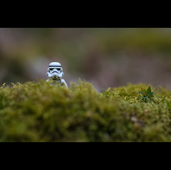 Stormtrooper (Hasselbach Photography) Tags: england toy 50mm starwars lego sigma stormtrooper newforest londonlondon englandengland borderfx
