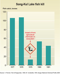 Song-Kul Lake fish kill (Zoi Environment Network) Tags: lake chart fish fall toxic water ecology asia graphic release graph pollution massive diagram impact data catch environment trend waste agriculture centralasia kyrgyzstan chemical ecosystem fishery influence reduction pesticides decrease songkul wasteandchemicalsincentralasia