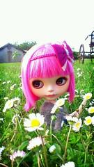Nuny, FA again for this week~ (K-Dolls Heaven) Tags: b art doll ooak guava blythe neo mold custom simply takara fbl scalp rbl flickrandroidapp:filter=berlin