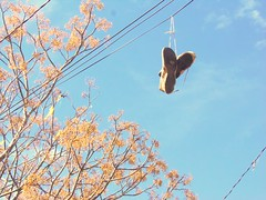 walking in the sky (inaiara de lima) Tags: blue autumn sky luz azul de cu sneakers fio outono tnis