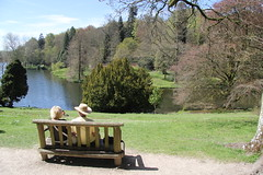 Happy Bench Monday (stepheneverettuk) Tags: uk trees england lake southwest water canon shadows lawn stourhead nationaltrust mere efs1785mmf456isusm hbm 60d happybenchmonday hoarefamily