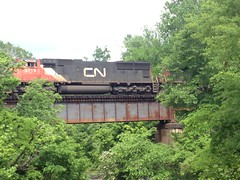 CN Crossing Trestle (dmott9) Tags: railroad trestle cn mississippi railfan
