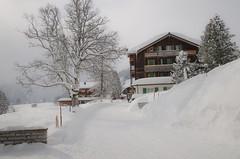 Murren (webeagle12) Tags: mountain snow mountains alps switzerland europe village swiss valley berne eiger bernese jungfrau monch berneseoberland oberland murren susse nikond90 1685mm