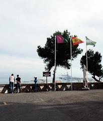 Desde Gibralfaro (yanfuano) Tags: sky espaa tree pine puerto arbol spain harbour balcony flag flags andalucia line cielo views bandera vistas andalusia pino balcon malaga banderas mirador cartel paradores parador gibralfaro