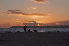 Last Minute Sand Castles (Mike Nethercott) Tags: ocean uk sunset sea england sky people dog sun castles beach beautiful silhouette clouds landscape coast sand devon sandcastle