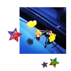 (emily kendall) Tags: flowers stars stickers windshield buttercups 52weeks fiftytwoweeks emilykendall