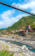 Harry_09718,,,,,,,,,,,,,,,,,,,,,,,,,,, (HarryTaiwan) Tags: taiwan    d800                            harryhuang
