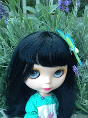 in the butterfly garden (moondoxy) Tags: garden blythe goldie bl uploaded:by=flickrmobile flickriosapp:filter=nofilter