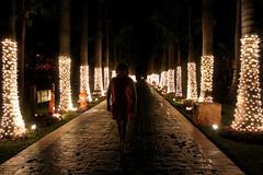 5th April (Bruno Fazenda) Tags: birthday christmas travel family light vacation tree beach night contrast dark mexico evening warm sister walk no sony flash sidewalk gift present f3 18mm 30mm nex
