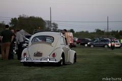 Doug's Beetle (Mike Burns Photography) Tags: classic mike vw volkswagen beetle burns lowered vwvortex shadybrookfarm mikeburnsphotography