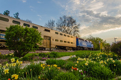 Metra and the garden (photo-engraver1) Tags: railroad wisconsin train garden transportation locomotive metra kenosha 140 f40ph3