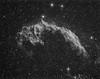 The Eastern Veil, Caldwell 33, NGC 6992, NGC 6995, IC 1340 - [explored] (Mick Hyde) Tags: Astrometrydotnet:status=solved Astrometrydotnet:version=14400 Astrometrydotnet:id=alpha20130597658403