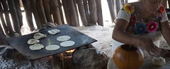 Mayan woman preparing tortillas (vintagedept) Tags: cooking mexico fire cuisine baking corn women village stitch maya dough traditional mayan tortilla maize masa flatbread quintanaroo comal limewater 2013 nixtamalera