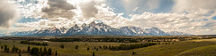 International Migratory Bird Day in Grand Teton (Robinsegg) Tags: grandtetonnationalpark internationalmigratorybirdday
