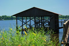 Fishing Pier on the Bayou (ELKMTN) Tags: pier fishing louisiana bayou wetlands cypress benton