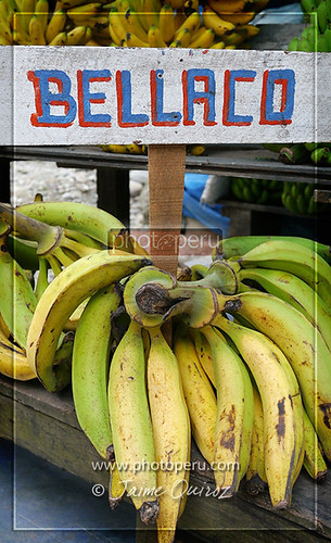 Plátano bellaco