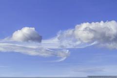 Light as a Cloud (olvwu | ) Tags: blue sky cloud taiwan taipei   taipeicity   jungpangwu oliverwu oliverjpwu  olvwu jungpang