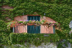 Italian house with plants (Cornelie) Tags: italy nikon balcony nikkor toscane italie cornelie d7100 willemstein balconywithflowers corneliewillemsteinnl typicalitalianhouse
