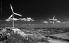 The lights can stay on (andrewknots) Tags: bw monochrome photography blackwhite europe flickr sweden places windswept environment popular windturbine windfarm upcoming publication windenergy lysekil geolocation naturalresources energycreation 500px geocity camera:make=canon windturbinegenerator exif:make=canon cvkcv30 geocountry geostate exif:lens=ef2470mmf28lusm exif:aperture=ƒ22 andrewskeywords exif:model=canoneos5dmarkiii camera:model=canoneos5dmarkiii lrmanaged exif:isospeed=160 exif:focallength=38mm geo:lat=58338616666667 geo:lon=1141125