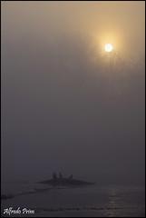 In the mist .......... (alfvet) Tags: mist nature fog river ticino nikon fiume atmosphere natura nebbia soe parcodelticino veterinarifotografi d5100