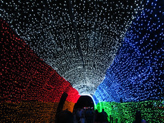 Tunnel of lights (beeffaucet) Tags: christmas lights colombia medellin