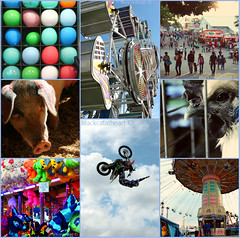(Blackcatatheart) Tags: people game chicken bike collage kids barn fun person pig kid fairground farm crowd perspective fair games collection motorbike gravity cycle stuffedanimals motorcycle zipper prize rides motor livestock adrenaline crowds ambiance balloo pirzes